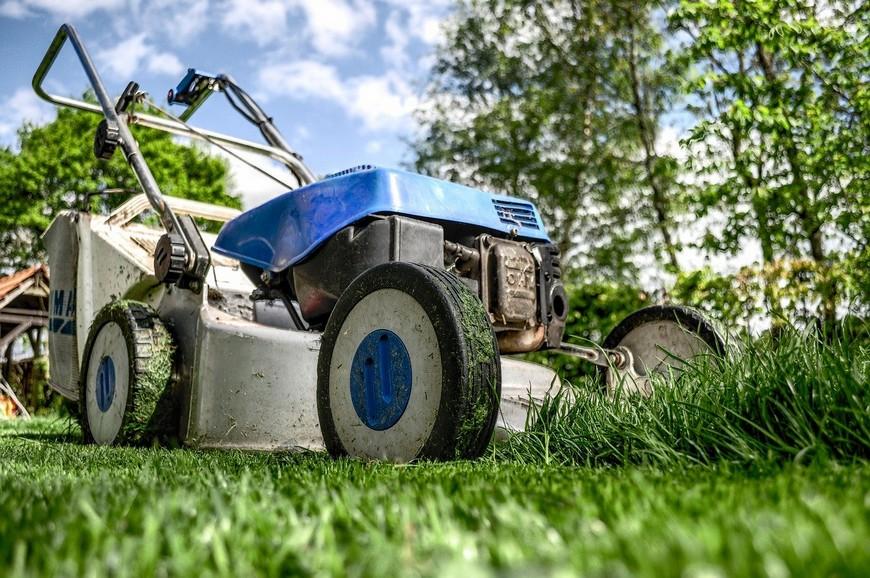 pelouse et jardinage